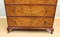 Burr Walnut Chest of Drawers (7 of 8)