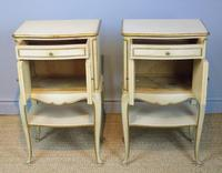 Pretty Pair of French Painted Bedside Cabinets (4 of 7)