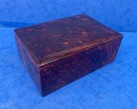 1930s Tortoiseshell Table Box (8 of 11)