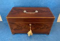 George III Mahogany Twin Canister Tea Caddy (2 of 17)