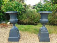Fine Pair of Cast Iron Campana Garden Urns c.1900 (2 of 8)