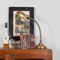 Good Brass Gooseneck Desk Lamp c.1915