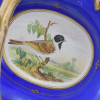 Fine & Large Alcock Rococo Porcelain Ornithological Basket c.1845 (10 of 17)