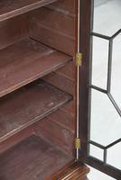 Astragal Glazed Bookcase (10 of 12)