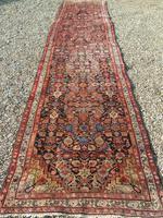 Antique Malayer Carpet Runner (6 of 7)