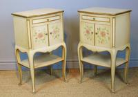 Pretty Pair of French Painted Bedside Cabinets (2 of 7)