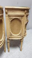 Fabulous French Bergere Bedside Cabinets (12 of 12)