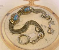 Antique Pocket Watch Chain 1880s Victorian Silver Nickel & Enamel Fancy Albert (3 of 11)