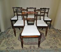 Set of 6 William IV Rosewood Dining Chairs (4 of 9)
