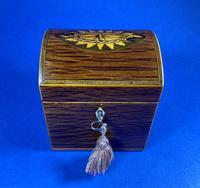 George III Partridge Wood Tea Caddy (7 of 12)