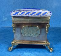 Arts & Crafts Glass and Brass Single Tea Caddy. (11 of 18)
