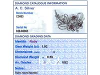 1.02ct Ruby & 0.55ct Diamond, 15ct White Gold Spray Brooch c.1925 (8 of 9)