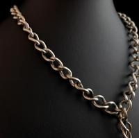 Antique Silver Double Albert Chain, Victorian (8 of 14)
