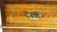 Victorian Inlaid Burr Walnut Pier  / Display Cabinet (14 of 24)