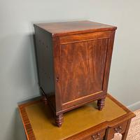 Spectacular Small Regency Antique Mahogany Collectors Cabinet (4 of 8)