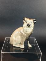 Charming Scottish Bridgeness Pottery, Bo'ness, Pug Dog c.1925 (2 of 11)