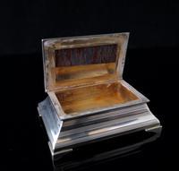Antique silver table vesta, chest (11 of 11)