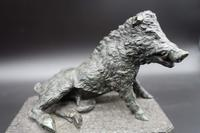 A Finely Modelled Mid 19th Century Bronze Figure of the Ufizzi Boar (4 of 8)