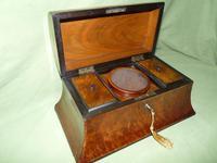 Large Burr Walnut Bell Style Tea Caddy - Original Lids c.1870 (11 of 11)