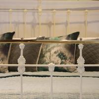 Cream Brass and Iron Antique Bed (3 of 6)