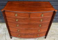 Superb Quality Regency Mahogany Bow Fronted Chest of Drawers (15 of 16)