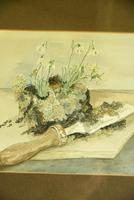 Snowdrops Still Life Watercolour (7 of 9)