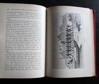 1880 1st Edition The Stirring Times of TE Rauparaha by W T L Travers Rare Maori Book (3 of 4)