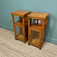 Unusual Pair of Victorian Satinwood Antique Cabinets (5 of 6)