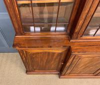William IV Mahogany Breakfront Bookcase (7 of 15)