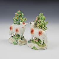 Pair of Derby Porcelain Bocage Figures of Sheep, Ram & Ewe c.1770 (9 of 10)