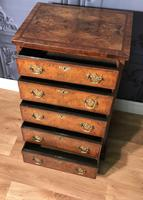 Burr Walnut Chest of Drawers c1890 (8 of 15)