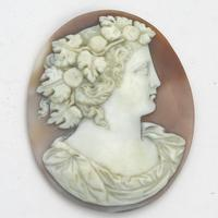 Fine & Large Unmounted Carved Shell Classical Portrait Cameo 19th Century