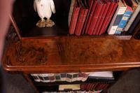 Open Bookcase in Burl Walnut - 19th Century (13 of 13)