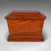Large Antique Sarcophagus Cellarette, English, Mahogany, Wine Cooler, Regency (3 of 12)