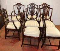 1960's Mahogany Set 8 Wheatcheaf Style Dining chairs. Pop out Seats (2 of 3)