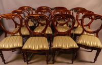 Set of 12 Victorian Mahogany Balloon Back Dining Chairs fully restored (5 of 11)
