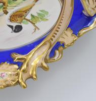 Fine & Large Alcock Rococo Porcelain Ornithological Basket c.1845 (15 of 17)