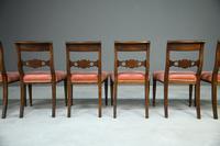 6 Regency Mahogany Dining Chairs (7 of 9)