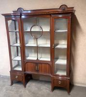 Edwardian Carved Mahogany Display Cabinet / China Cabinet