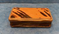 Victorian Horn & Tortoiseshell Snuff Box (2 of 13)