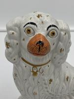 Pair of Antique Staffordshire Dogs (5 of 7)