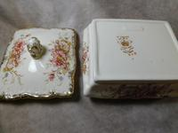 """19th Century S. Fielding & Co """"Sevres"""" Pattern Lidded Dish (5 of 5)"""