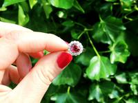 1.70ct Thai Ruby & 0.70ct Diamond, 18ct White Gold Cluster Ring - Vintage c.1950 (2 of 12)