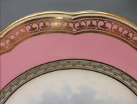 Superb Davenport Cabinet Plate c.1870 (4 of 7)