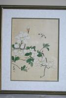 3 x Chinese Botanical Watercolours (6 of 12)