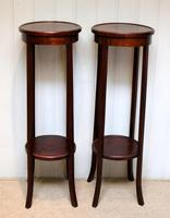 Pair of Edwardian Mahogany Jardinière Stands (2 of 10)