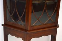 Antique Mahogany Display Cabinet on Stand (6 of 10)
