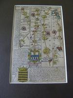 """18thC Road Map Dorset """" Dunkton - Weymouth"""" c1720 Britannia Depicta (5 of 5)"""