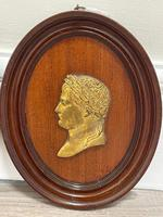 Pair of Interesting 19th Century Gilded Bronze Alexander The Great & Napoleon Cameo Plaques (10 of 29)