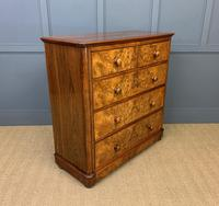 Victorian Burr Walnut Chest of Drawers (5 of 13)